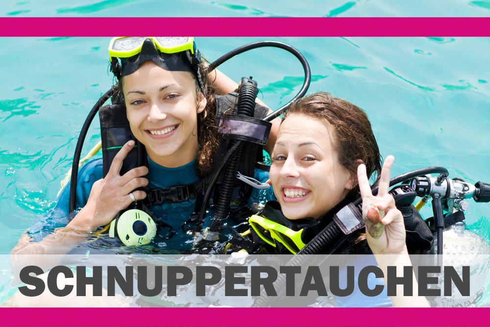 € 5,00 Buoni | Discover Scuba Diving | DIVE CENTER KRK