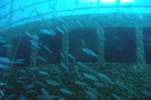 padi-advanced-open-water-diver-kurs